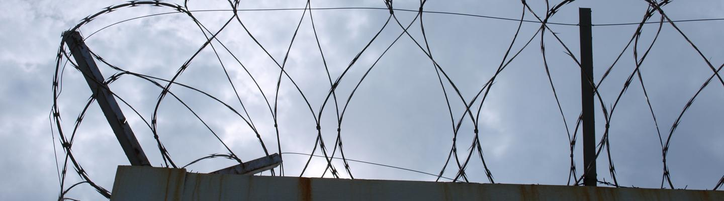 Reprisals - a major challenge for torture prevention bodies