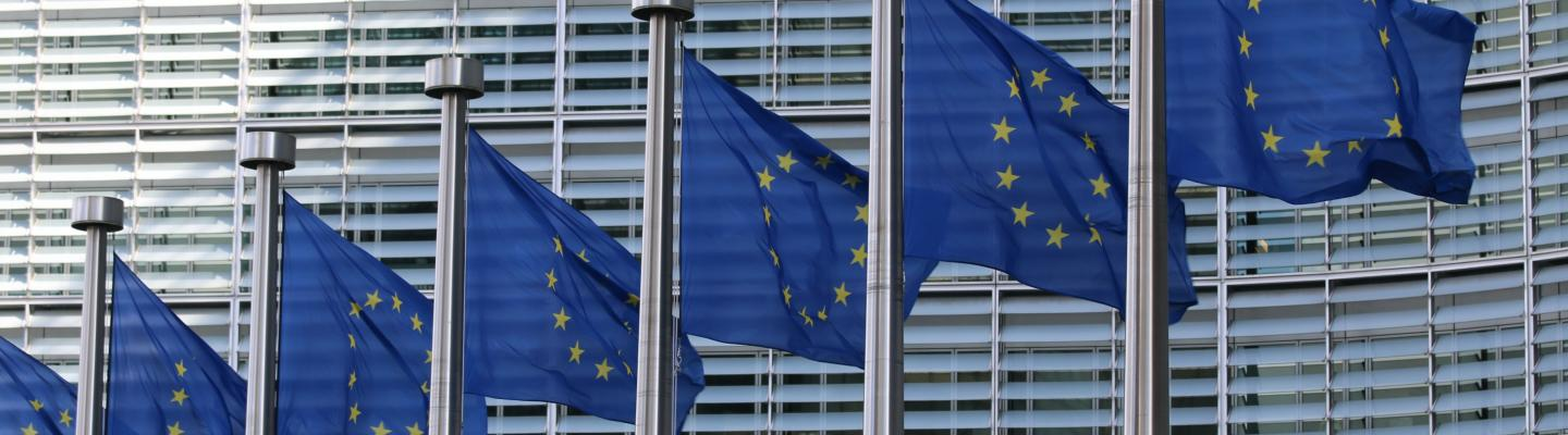 Fight against torture a priority in new EU Action Plan