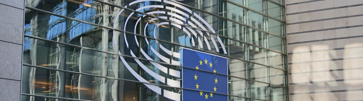Advocacy for the prevention of torture in the European inter-governmental bodies